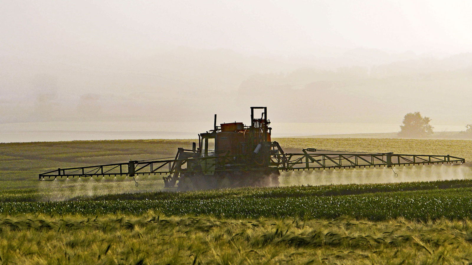 <h4>Risks To Our Health</h4><p>The class of pesticides known as pyrethroids accounts for nearly one-third of all pesticide use worldwide. A recent study found that pyrethroid exposure was linked to a 56% increased risk of premature death.</p><em>Public Domain</em>